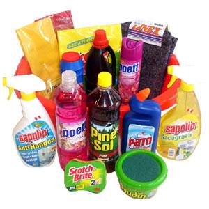 Manual de productos de limpieza y cosméticos